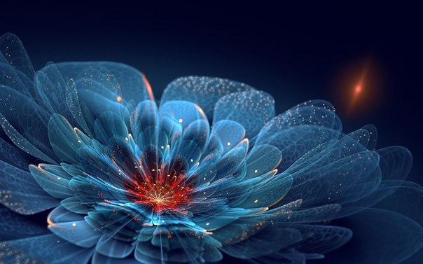 Быть может от любви в моем саду цветут красивые цветы?
