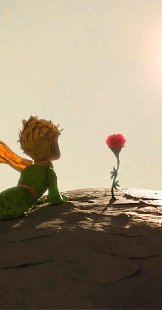 маленький принц любовь
